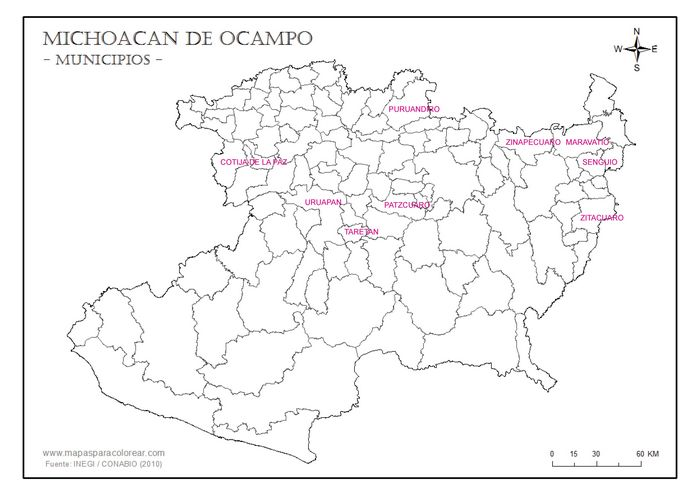 Michoacan local issues